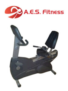ready life fitness 95ri 1